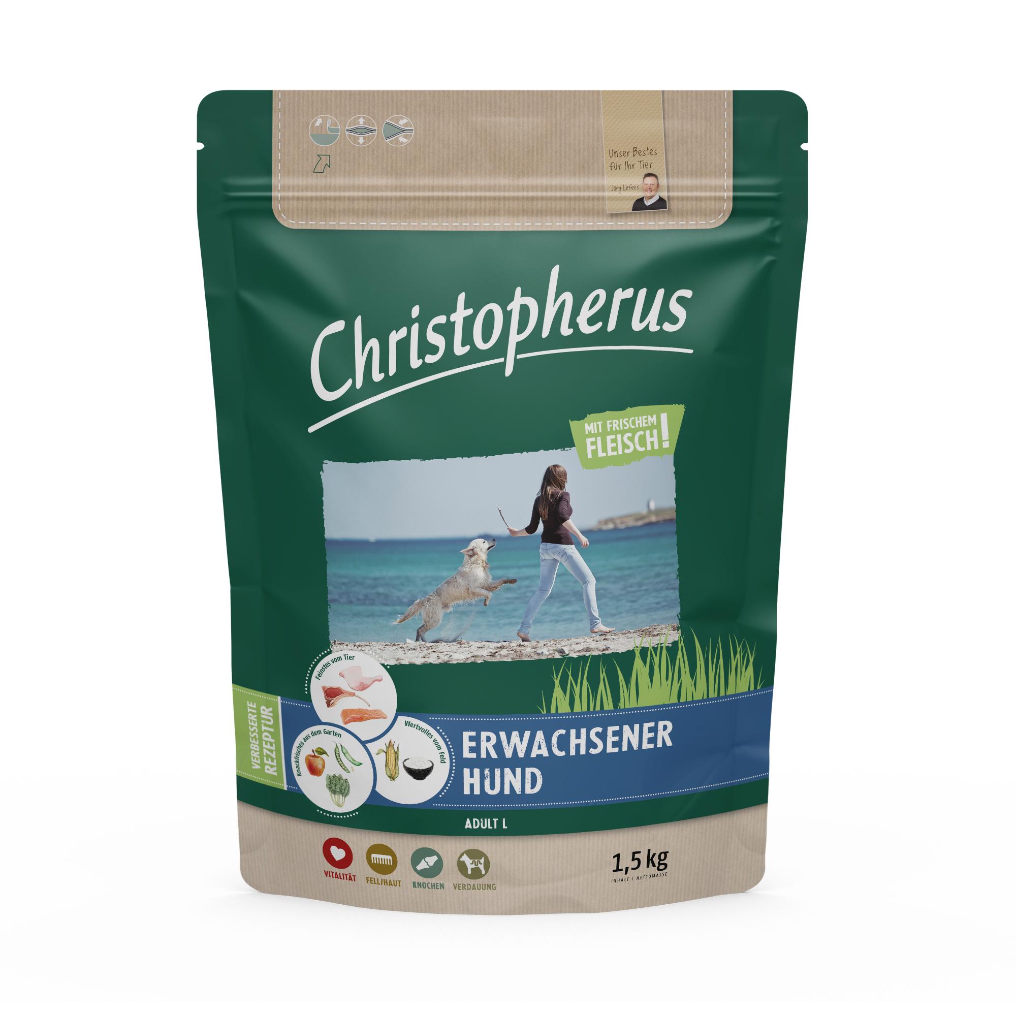 Christopherus – Erwachsener Hund