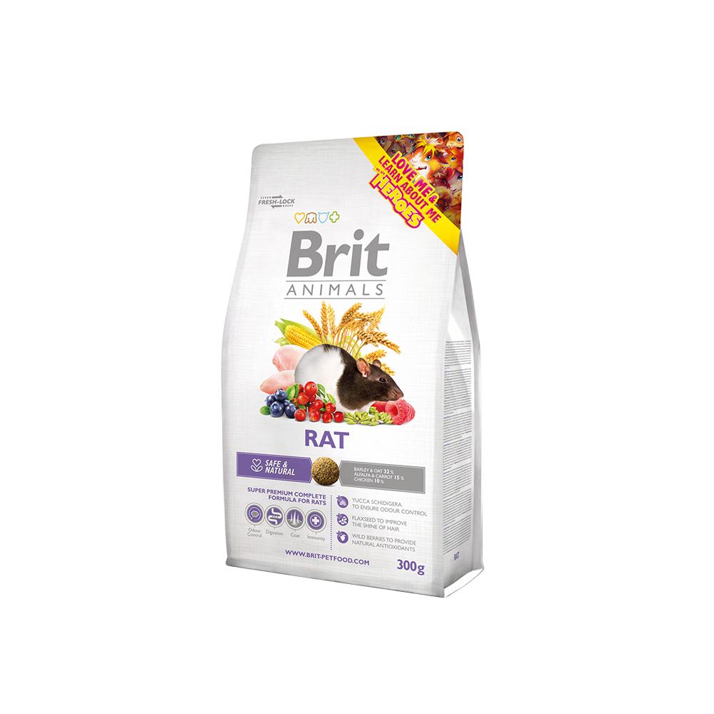 Brit Animals - Rat (Ratte)