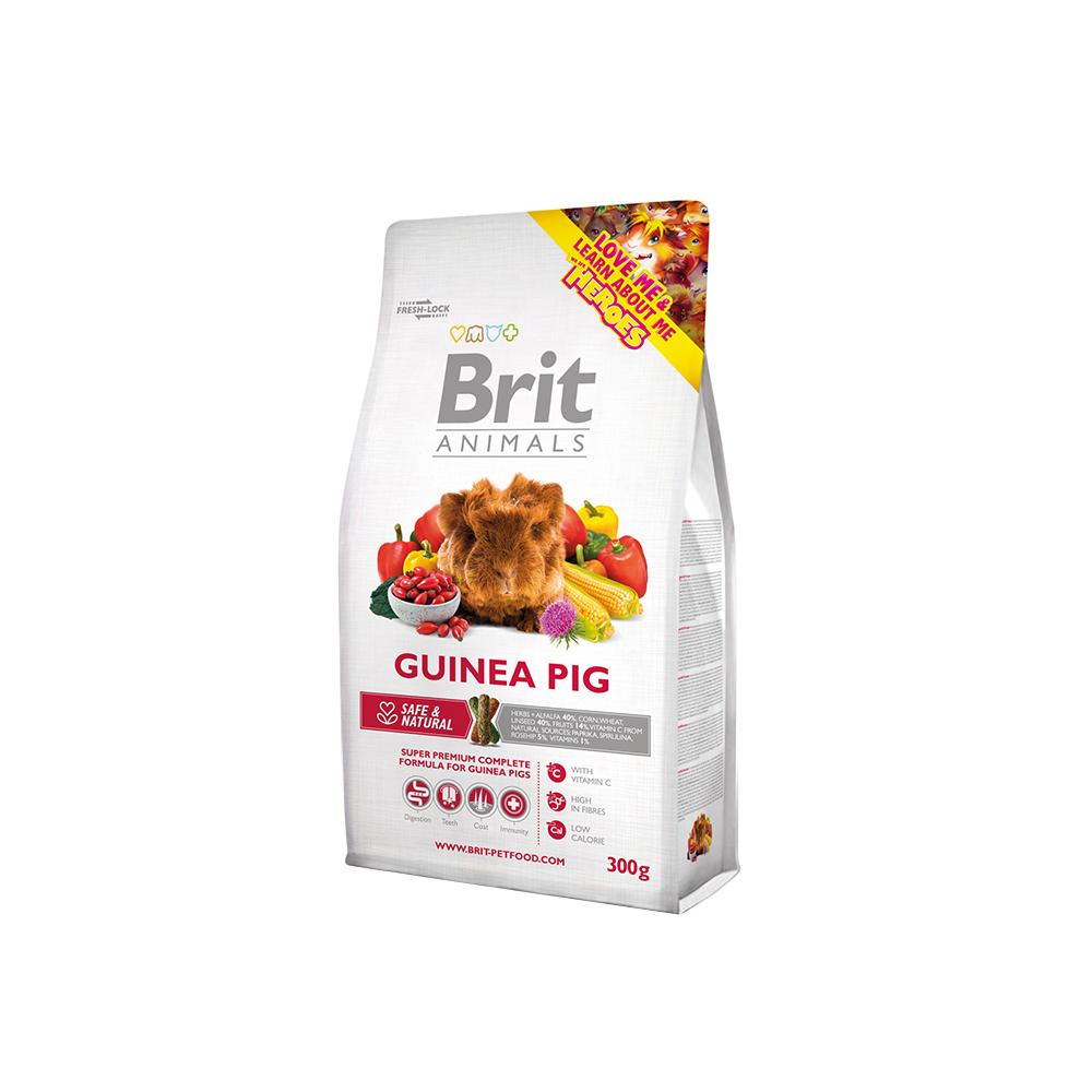 Brit Animals - Guinea Pig (Meerschweinchen)