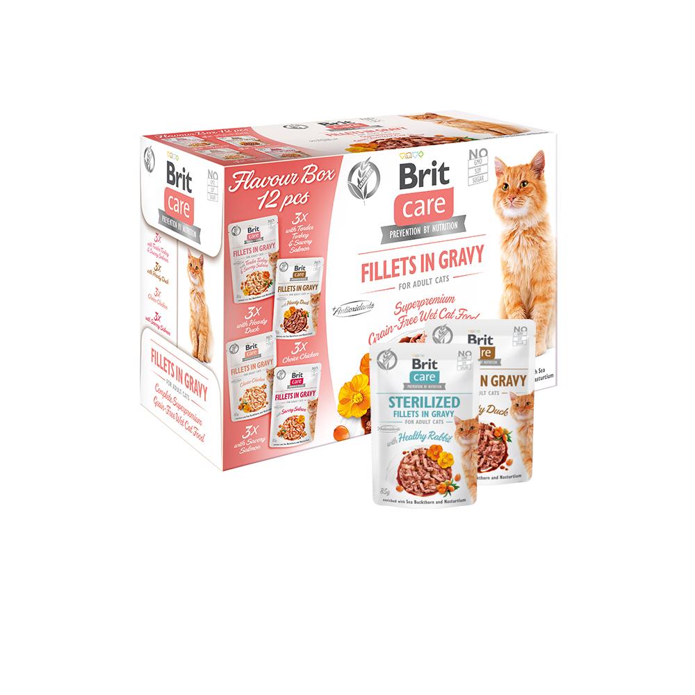 Brit Care Cat Flavour box - Fillets in Gravy (12er Pack)